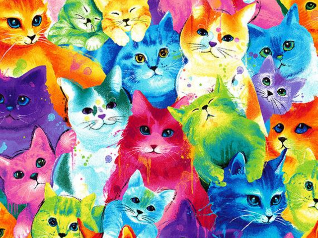 Bright Cats